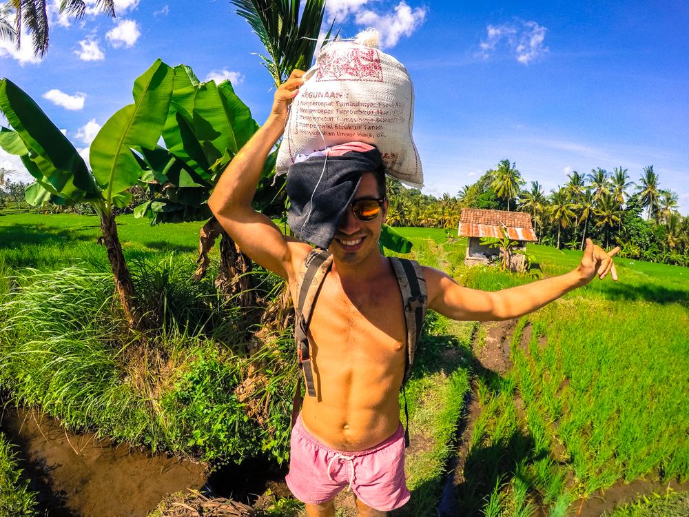 Bali remy